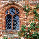 An Old Window  by hootonles