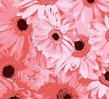 Blooming Gerbera Flowers and Petals - Pink by sitnica