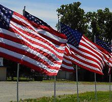 Happy Birthday, America! by WildestArt