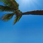 Tropical beach by DDMITR