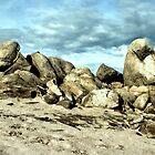 Lake Folsom Boulders by Polly Peacock