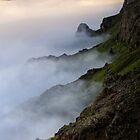 Misty Haleakala - Maui by Michael Treloar
