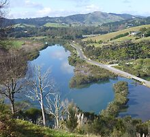 Oruru River Near Taipa by Dianne Connolly