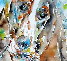 BASSET HOUND - watercolor portrait.1 by lautir
