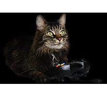 gamer cat Photographic Print