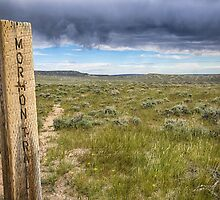 Mormon Trail by yellocoyote