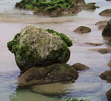 Green Rocks by Urbanfringe