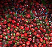 Fresh Home-grown Strawberries  by Robin Hecker