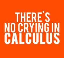 There's No Crying In Calculus by Alan Craker