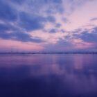 Tranquility  by Nigel Bangert