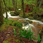 Gads Creek by Kevin McGennan