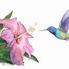Hummingbird and Hibiscus by Ray Shuell