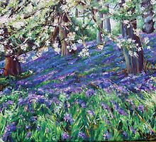 Bluebells by Kirsty O'Leary-Leeson