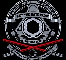 Force Training Academy - Sith by jo3bot