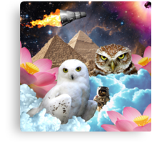 I Dream of Space Owls Canvas Print