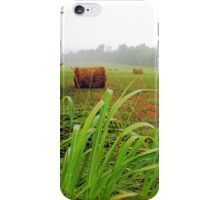 Tall Grass and Hay Bales iPhone Case/Skin