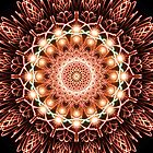 Digitally created firework sunburst by IreKire