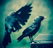 Feast for Crows I by MacGorman
