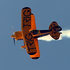Pitts Special S-1D  by larry flewers