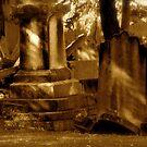 Graveyard. St Peters, N.S.W. by VenturAShot