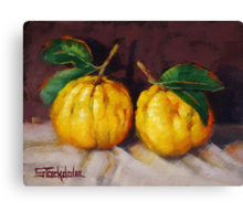 Bush Lemons Canvas Print