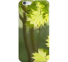 August Moon iPhone Case/Skin