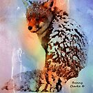 Fabulous Foxes:  Ready for the Party by Bunny Clarke