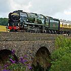 Braunton - 340046 by Beverley Barrett