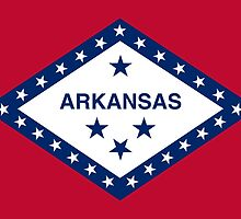 Arkansas State Flag by carolinaswagger