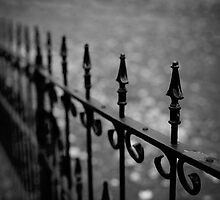 Gothic Fence by laughlovephoto