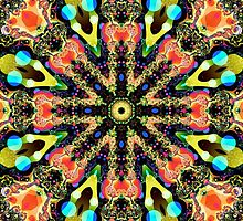 Colourful Pattern in a Kaleidoscope case by walstraasart
