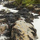 Rocks, Sand and Seaweed - Bosta Beach, Great Bernera by BlueMoonRose