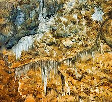 Carlsbad Caverns Study 4 by Robert Meyers-Lussier