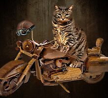 PURRING AND POSING - LONGING TO TAKE A RIDE-FELINE & MOTORCYCLE PICTURE by ╰⊰✿ℒᵒᶹᵉ Bonita✿⊱╮ Lalonde✿⊱╮