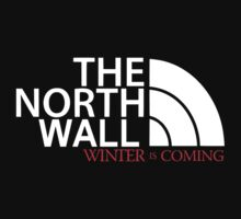 Game of Thrones / The north wall by mlmatov