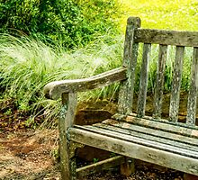 BENCH WITH DECORATIVE GRASS by pjm286