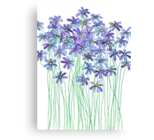 Purple Daisies in Watercolor & Colored Pencil  Canvas Print