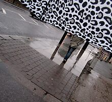 View from Inside a Brolly by Vanessa  Warren