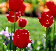 Red Tulips by PaintPerfect