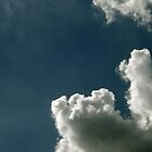 TOWERING CLOUD by Sandra  Aguirre