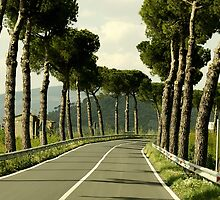 A Vacant Road in Rural Italy - Prints, Pillows and Cases by BadJokeJoel