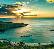 Hawaii by Leigh Anne Meeks