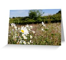 Summer's here :-) Greeting Card