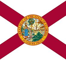 Florida State Flag by carolinaswagger