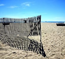 Fence on the Beach by Nalinne Jones