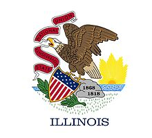 Illinois State Flag by Carolina Swagger