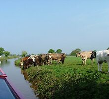 A peaceful scene on the Trent & Mersey Canal,  UK.........! by Roy  Massicks
