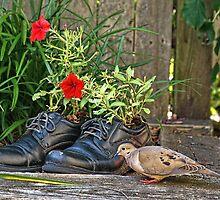 Joe Morning Dove's Men's Shoe Store by Lanis Rossi
