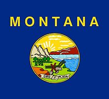 Montana State Flag by Carolina Swagger