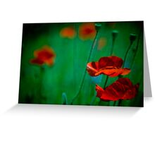 Vibrant red flowers in sea of green Greeting Card